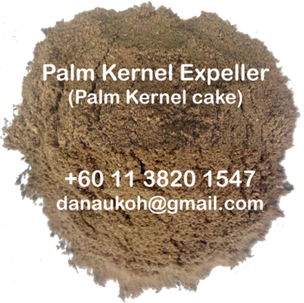 Animal Feed- Palm Kernel Cake